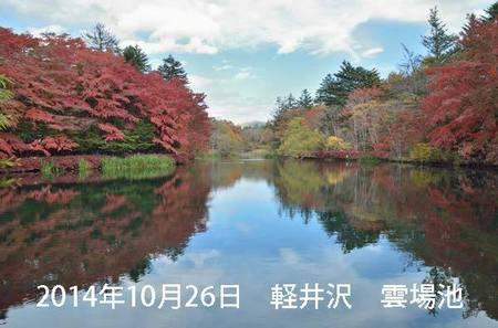 20141026kumoba00-1040.jpg