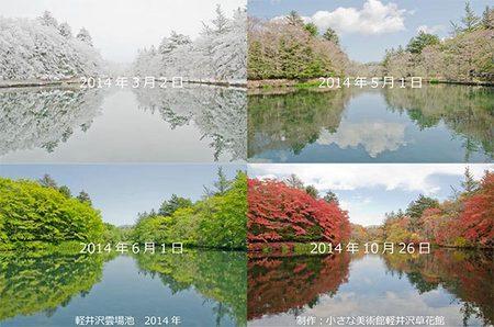 2014_season.jpg