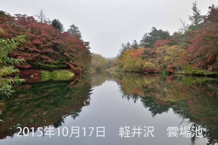 20151017kumoba00-0620.jpg