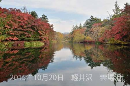 20151020kumoba00-0830.jpg