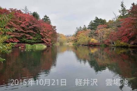 20151021kumoba00-1015.jpg