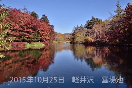 20151025kumoba00-0925.jpg