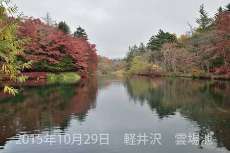 20151029kumoba00-0840.jpg
