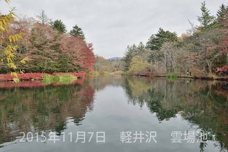 20151107kumoba00-0850.jpg