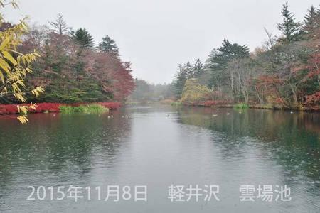 20151108kumoba00-0630.jpg