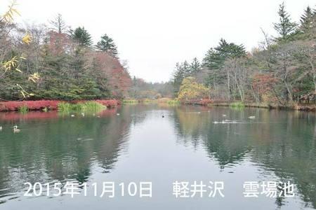20151110kumoba00-0855.jpg