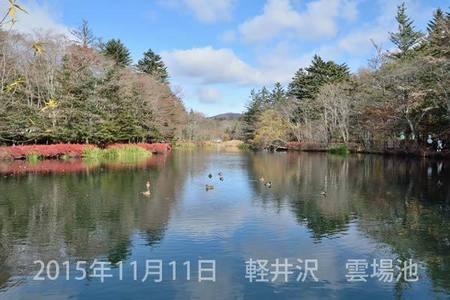 20151111kumoba00-1010.jpg