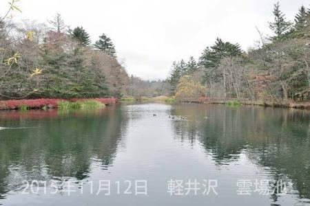 20151112kumoba00-0850.jpg