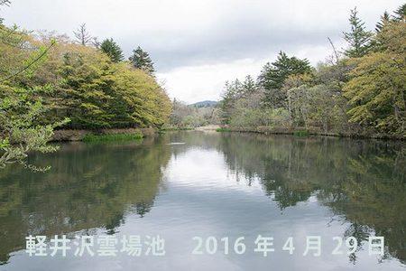 20160429kumoba00.jpg