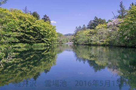 20160513kumoba00-1005.jpg
