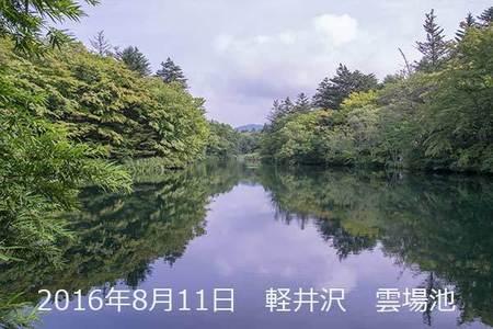 20160811kumoba00.jpg