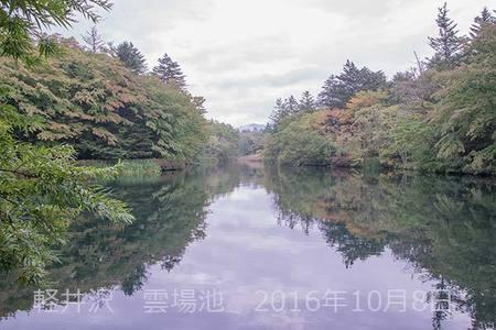 20161008kumoba00-1010.jpg