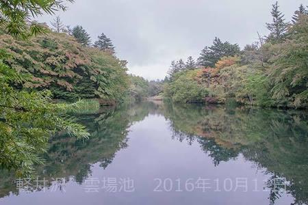 20161011kumoba00-0901.jpg