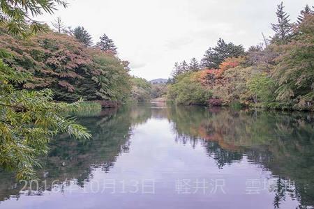20161013kumoba00-1219.jpg