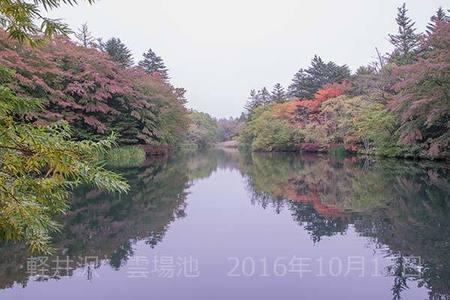 20161017kumoba00-1422.jpg