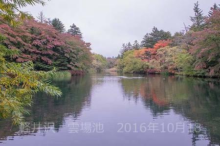 20161018kumoba00-0818.jpg