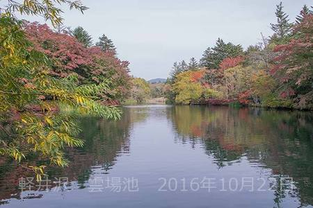 20161022kumoba00-1010.jpg