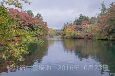 20161023kumoba00-0832.jpg