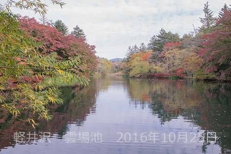 20161025kumoba00-0816.jpg
