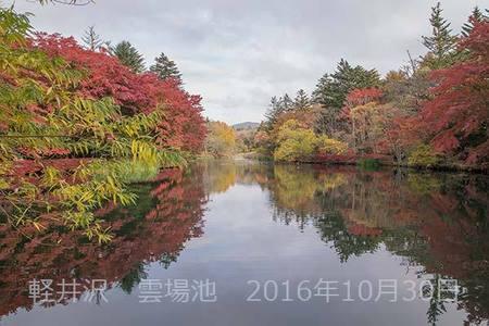 20161030kumoba00-0858.jpg