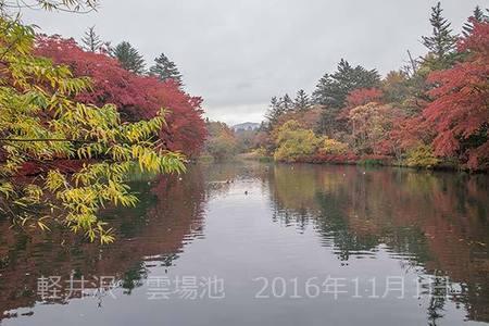 20161101kumoba00-0833.jpg