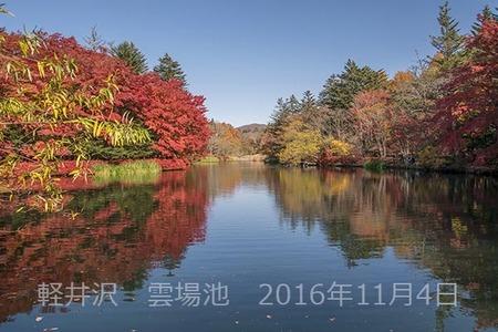 20161104kumoba00-0952.jpg