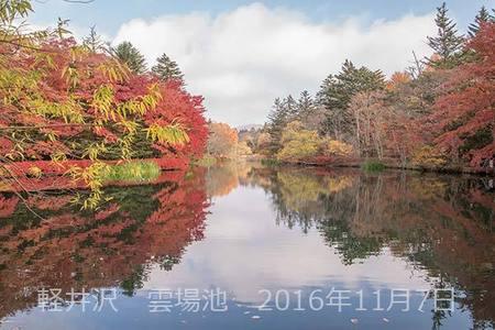 20161107kumoba00-0833.jpg