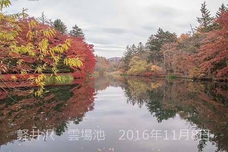 20161108kumoba00-0820.jpg