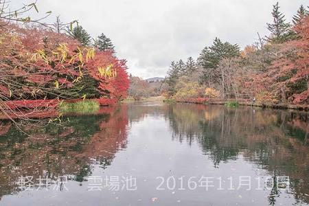 20161110kumoba00-0901.jpg
