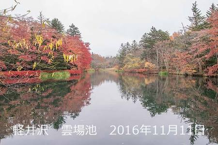 20161111kumoba00-0913.jpg
