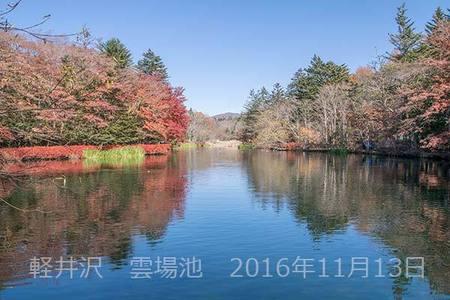 20161113kumoba00-1042.jpg