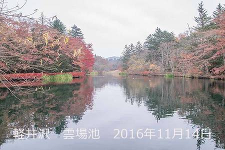 20161114kumoba00-0845.jpg