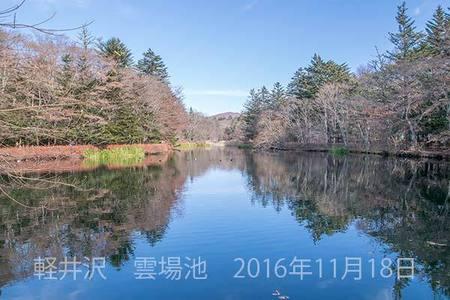 20161118kumoba00-0918.jpg