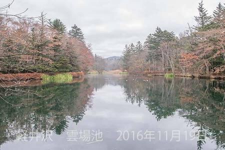 20161119kumoba00-0915.jpg