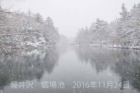 20161124kumoba00-1029.jpg