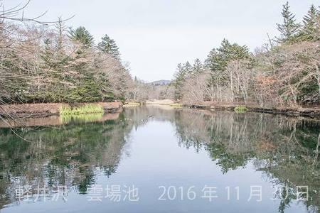 20161130kumoba00-1137.jpg