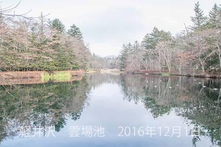20161201kumoba00-0930.jpg