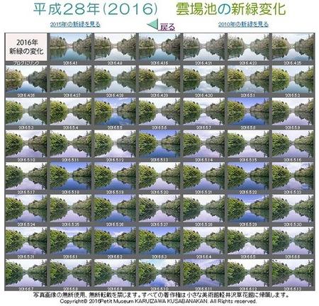 2016kumoba-sinryoku.jpg