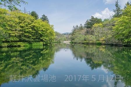 20170512kumoba00-1054.jpg