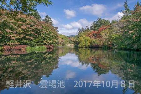 20171008kumoba00b-1018.jpg
