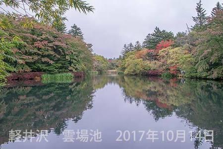 20171014kumoba00b-1221.jpg