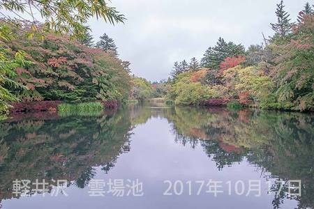 20171017kumoba00-0909.jpg