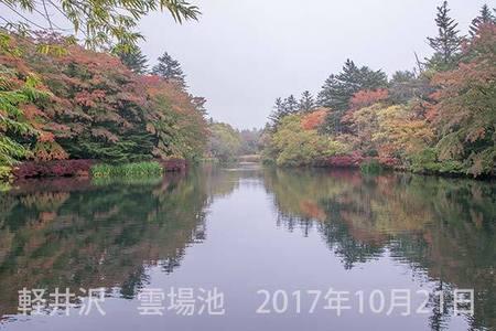 20171021kumoba00-1457.jpg