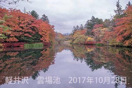 20171028kumoba00-0642.jpg