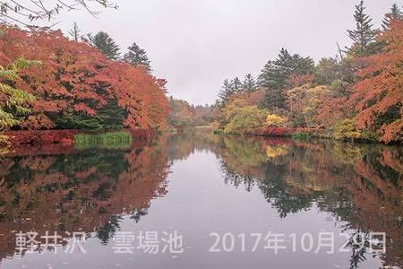 20171029kumoba00-1354.jpg
