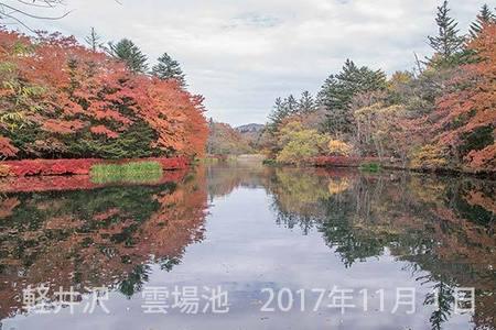 20171101kumoba00-0917.jpg