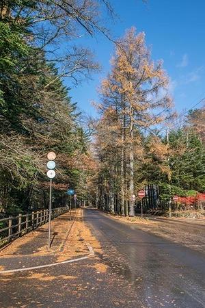 20171111mikasa-karamatsu01-0904.jpg