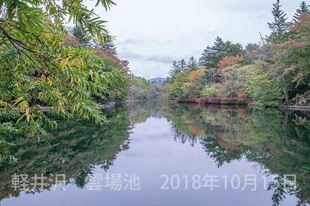 20181015kumoba00-0853.jpg