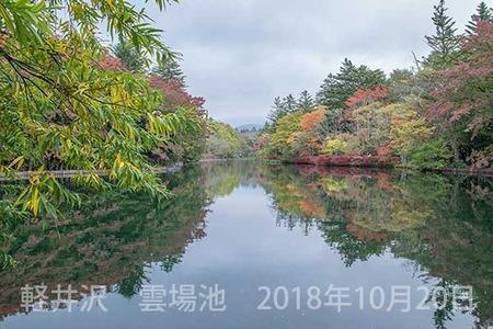 20181020kumoba00-0910.jpg