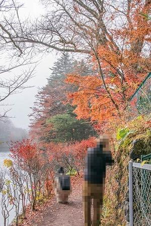 20181110kumoba08-0845.jpg